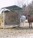 porta rotoballe porta fieno mangiatoia per cavalli