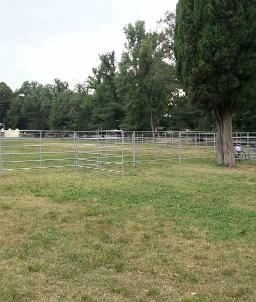 fence d.35-10
