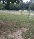 fence d.35-11