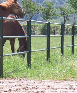 Recinzioni fisse per cavalli