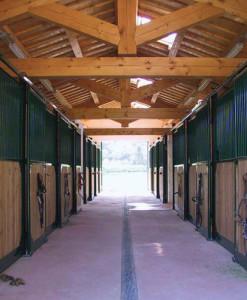 Scuderie cavalli con corsia centrale